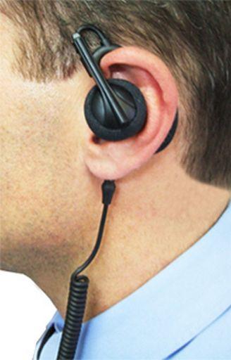 RPA2112_Ear