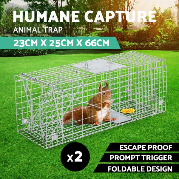 trap-cage-6623×2-01